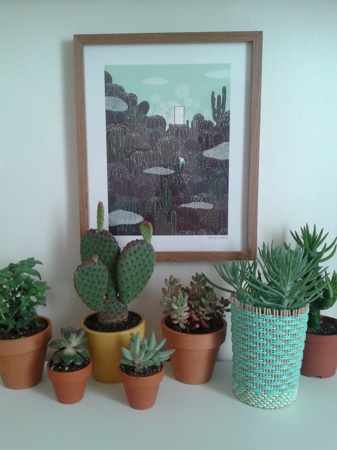 cactus, yasmine gateau, illustration