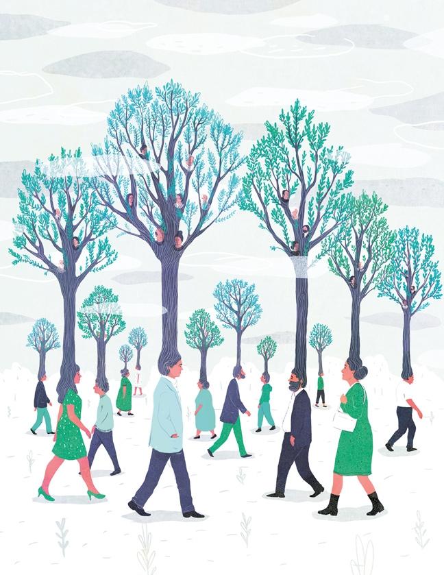 yasmine gateau, illustration, editorial illustration, panorama, hériter de son histoire familiale, héritage, arbre généalogique, trees