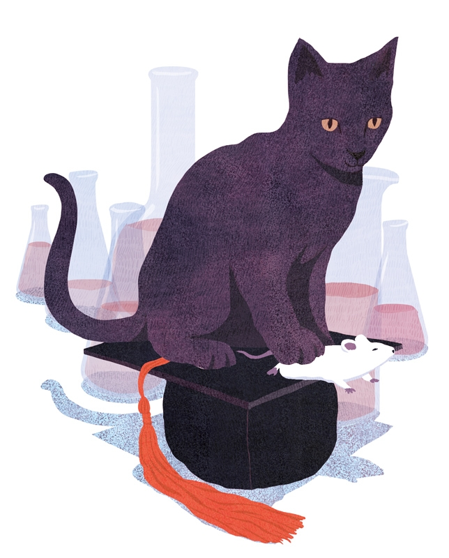 yasmine gateau, illustration, science magazine