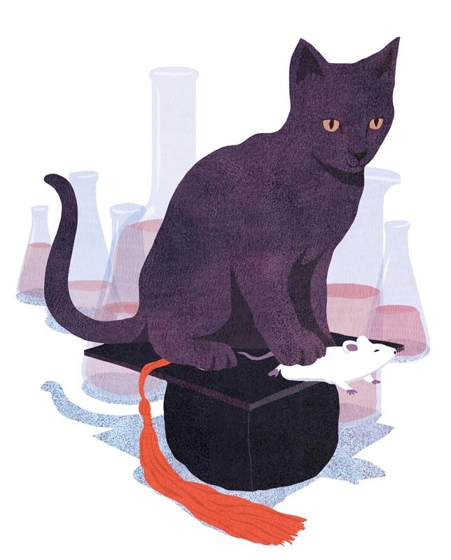 yasmine gateau, illustration, science magazine