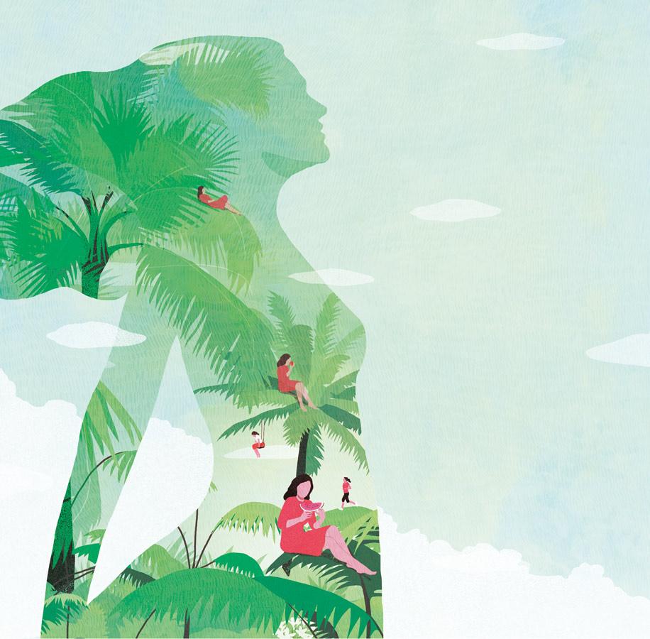 yasmine gateau, sens & santé, illustration